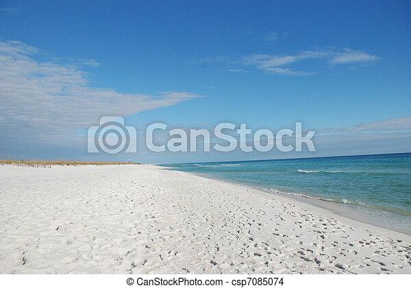 tengerpart, fehér, florida, homok - csp7085074