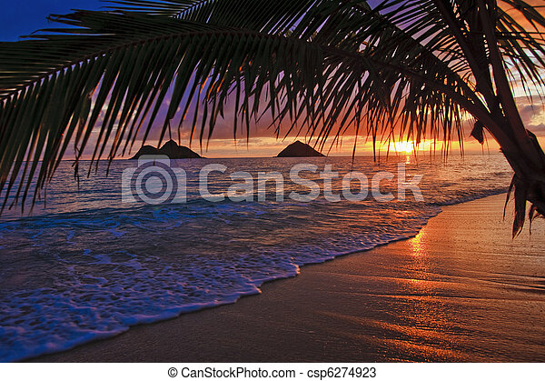tengerpart, napkelte, lanikai, hawaii, békés - csp6274923