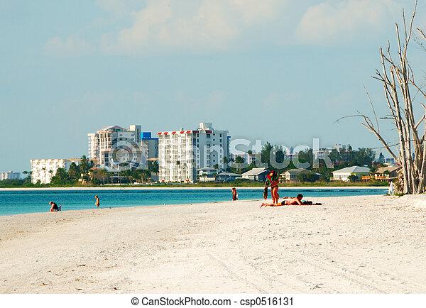 tengerpart, szerelmes pár, florida - csp0516131