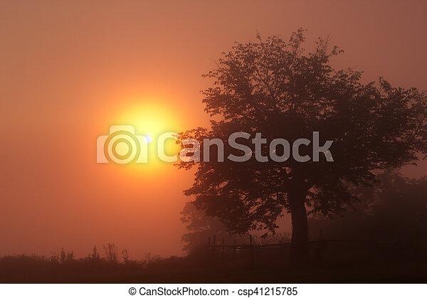 Tengu mountain Sunrise - csp41215785