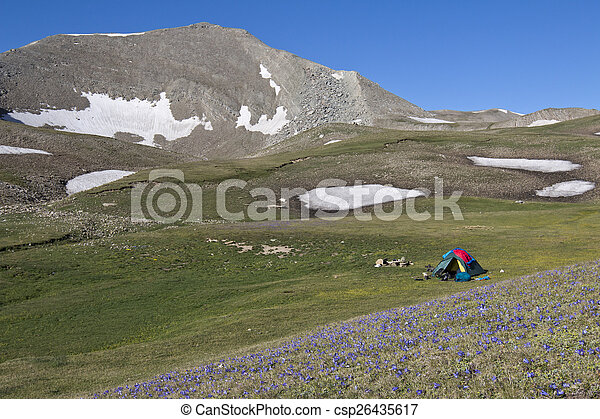 tent at Asian Caucasus, Azerbaijan with many blue flowers in front - csp26435617