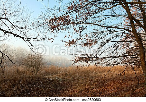 természet - csp2620683