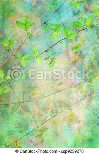 természetes, zöld, művészi, háttér, grunge, gyönyörű - csp9239278