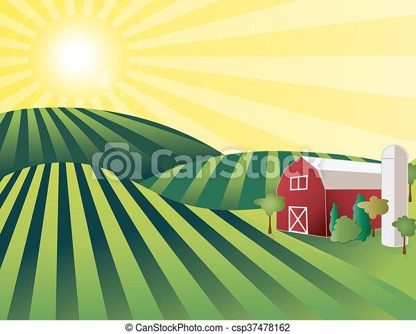 terra fazenda - csp37478162