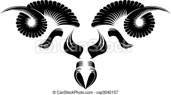 testa pecora - csp3040157