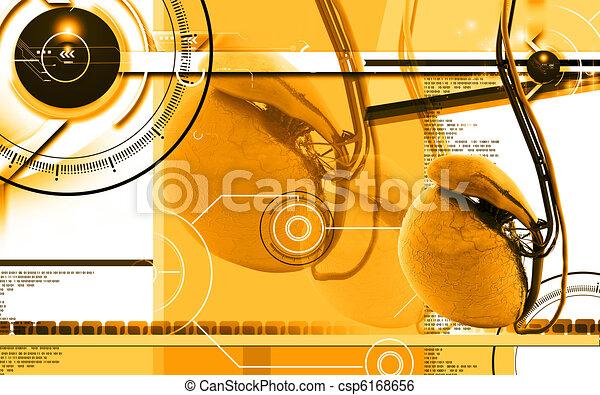 Testicles - csp6168656