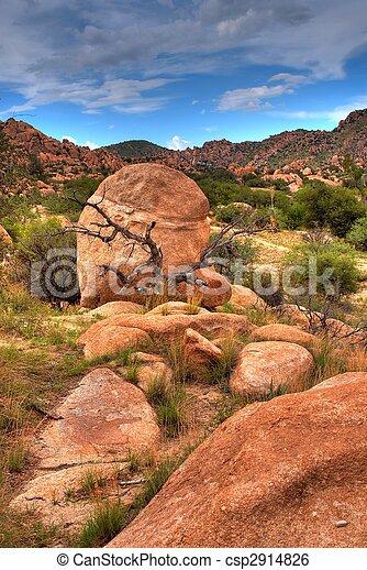 Texas Canyon - csp2914826