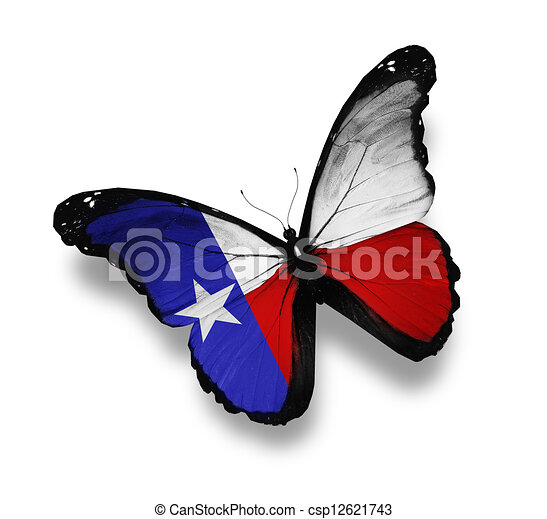 Image result for texas flag pictures free