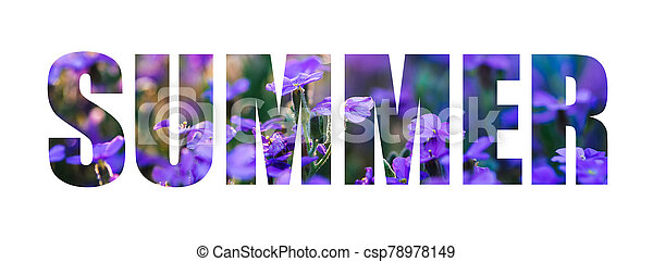 Text Summer on a background of purple flowers. The inscription isolated - csp78978149
