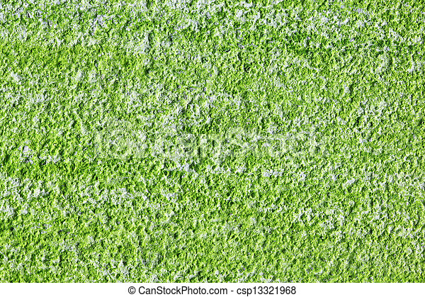 textura algae - csp13321968