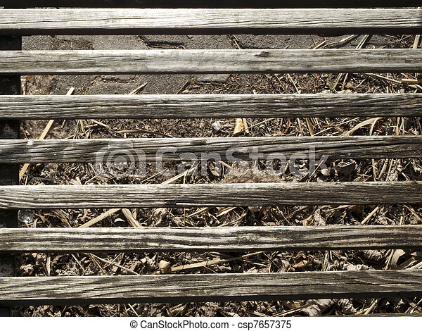 Una textura de madera - csp7657375
