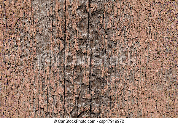 Texture of a wooden surface - csp47919972