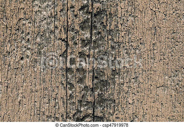 Texture of a wooden surface - csp47919978