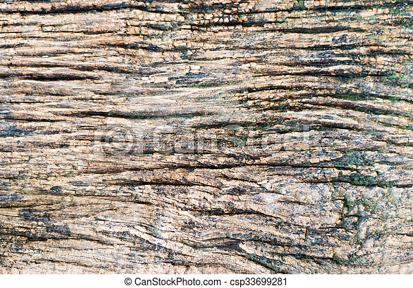 texture of a wooden surface - csp33699281