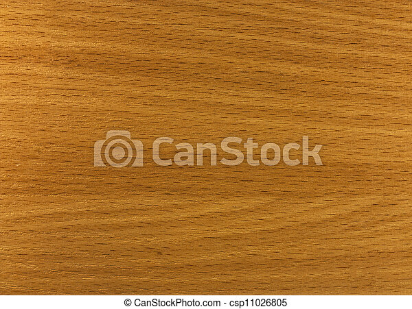 Texture of a wooden surface - csp11026805