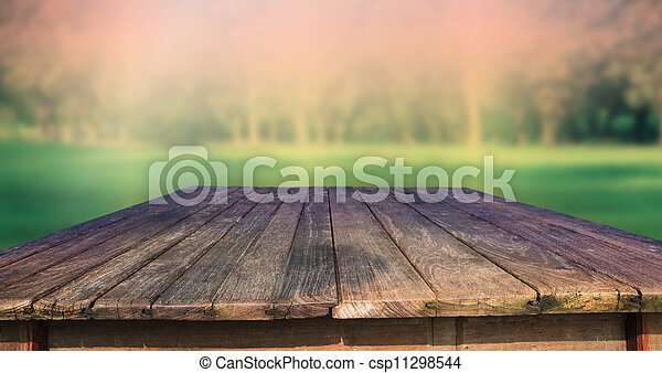 texture of old wood table and green - csp11298544