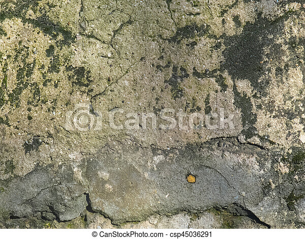 Texture of the old wall with fungus - csp45036291