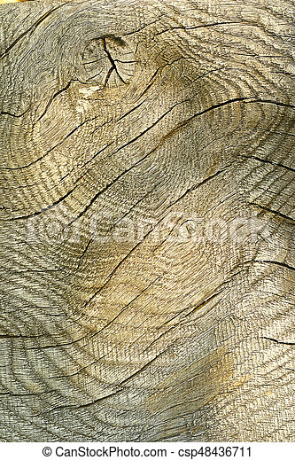 texture of wooden plank for your design - csp48436711