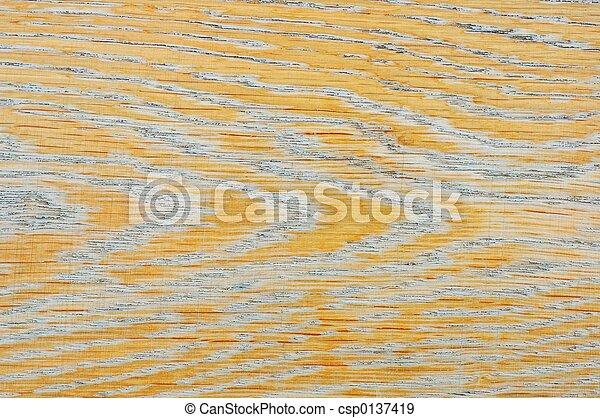 Texture - csp0137419