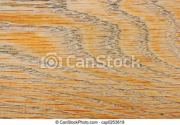 Texture - csp0253619
