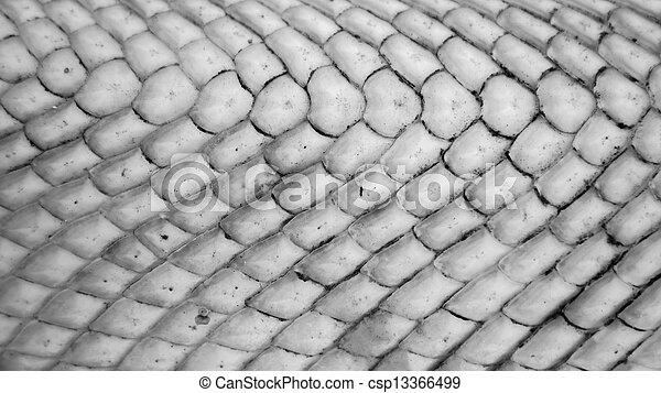 texture - csp13366499