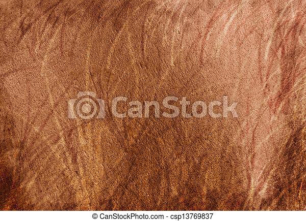 Texture - csp13769837