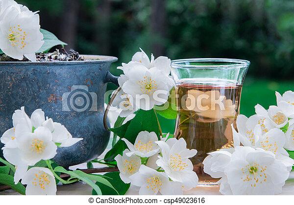 th%C3%A9-fleurs-jasmin-image_csp49023616.jpg