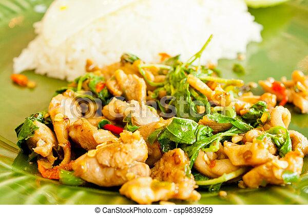 Thai Basil Fried Rice with chicken - csp9839259