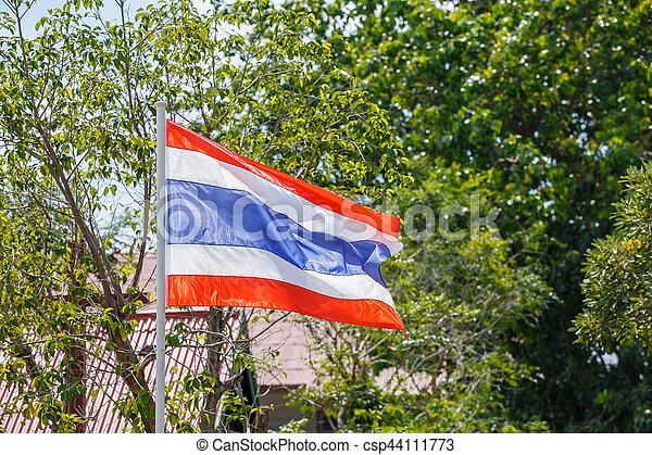 Thai flag of Thailand with tree background. - csp44111773