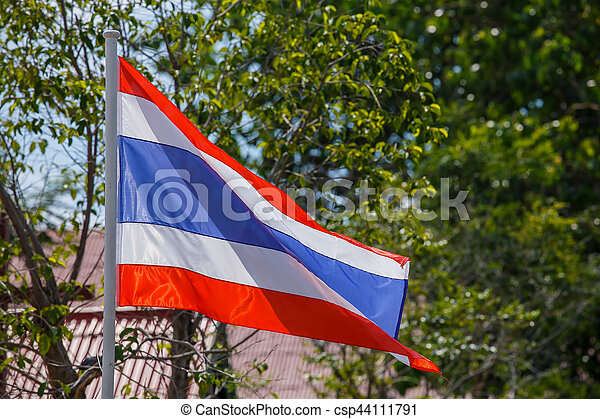 Thai flag of Thailand with tree background. - csp44111791
