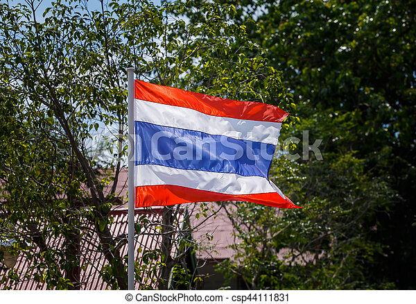 Thai flag of Thailand with tree background. - csp44111831