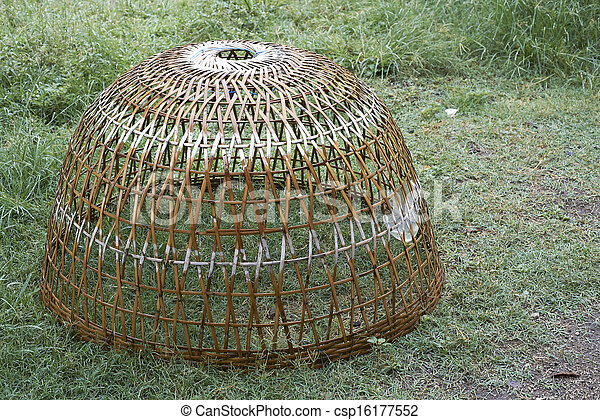 Necessary asian style chicken house think