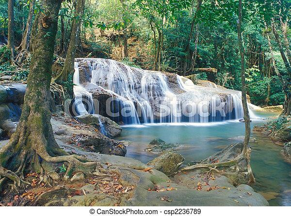 thaiföld, vízesés, dzsungel - csp2236789