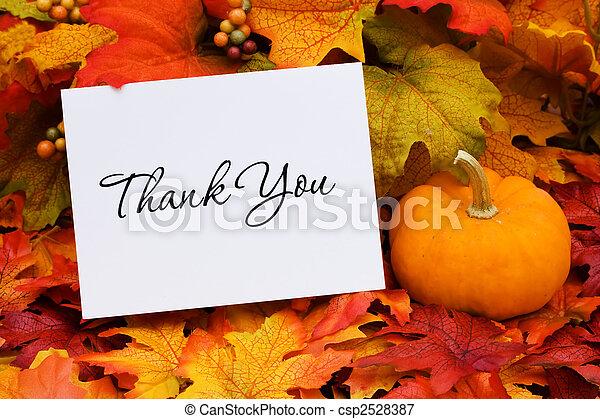 Thank You - csp2528387