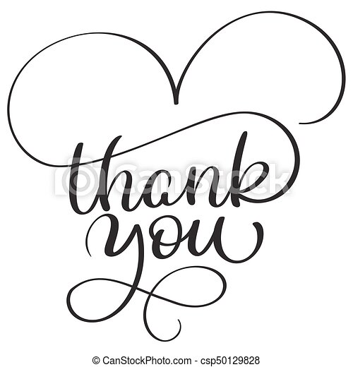 thank you text on white background hand drawn calligraphy lettering