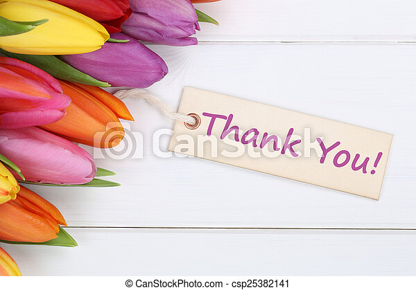 Thank You with tulips flowers - csp25382141