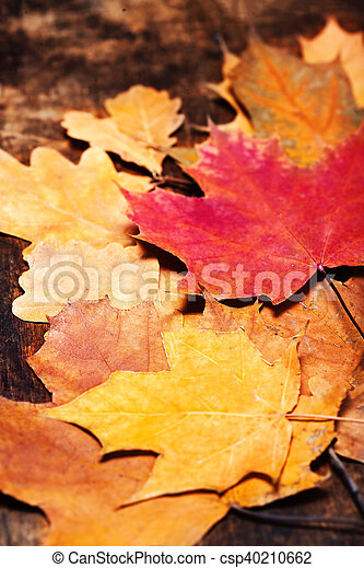 Thanksgiving Autumn Fall Background With Colorful Leaves Over Rustic Wooden Table Happy Card
