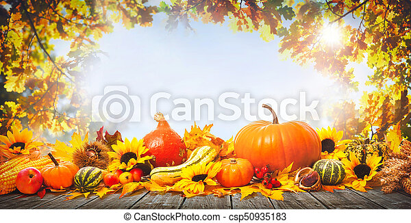 Thanksgiving background with pumpkins - csp50935183