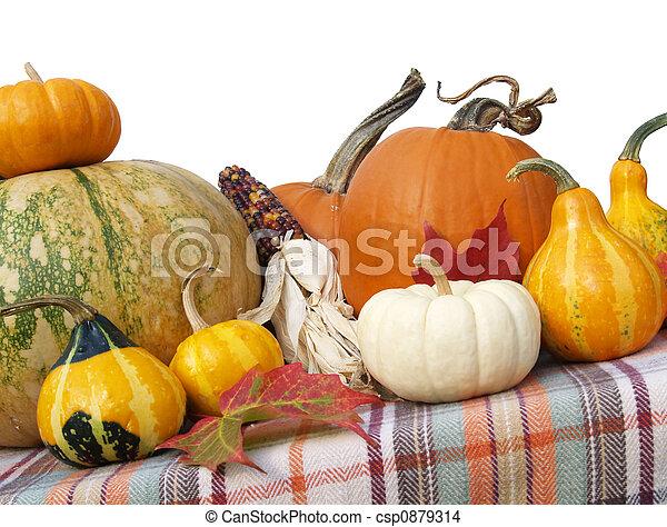 Thanksgiving gourds and pumpkins - csp0879314