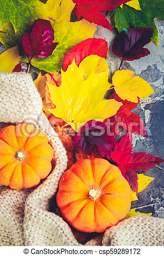Thanksgiving pumpkins with fall leaves - csp59289172