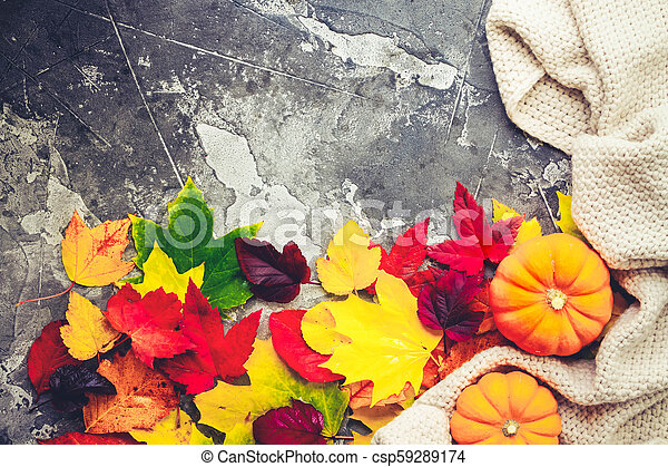 Thanksgiving pumpkins with fall leaves - csp59289174