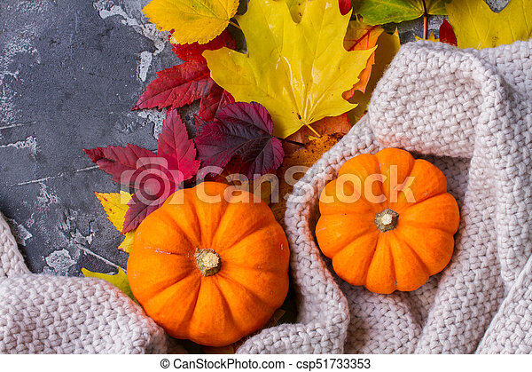 Thanksgiving pumpkins with fall leaves - csp51733353
