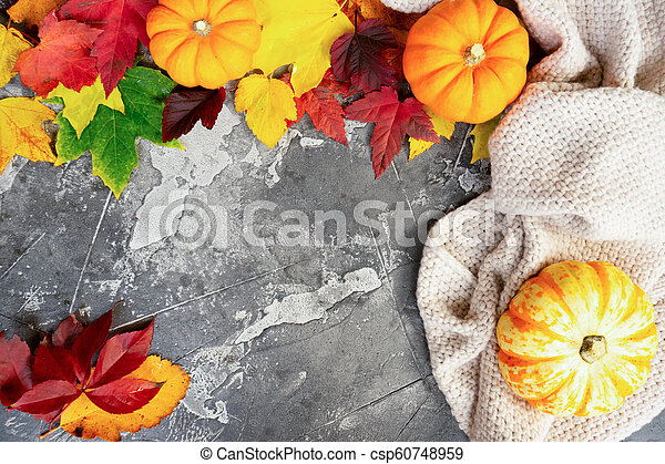 Thanksgiving pumpkins with fall leaves - csp60748959