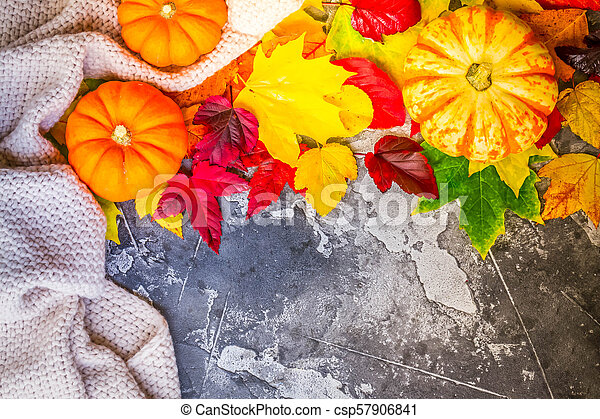 Thanksgiving pumpkins with fall leaves - csp57906841