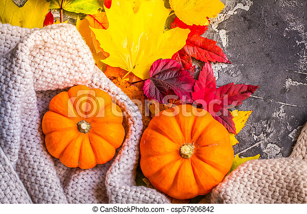 Thanksgiving pumpkins with fall leaves - csp57906842