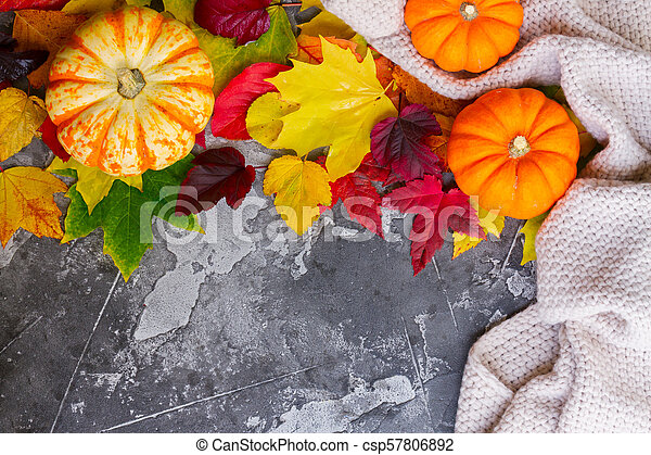 Thanksgiving pumpkins with fall leaves - csp57806892