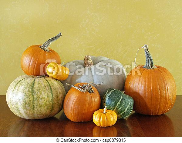 Thanksgiving squash and pumpkins - csp0879315