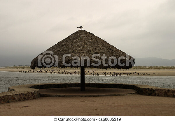 Thatch Umbrella - csp0005319