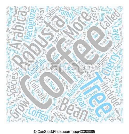 The anatomy of a coffee tree text background wordcloud concept.