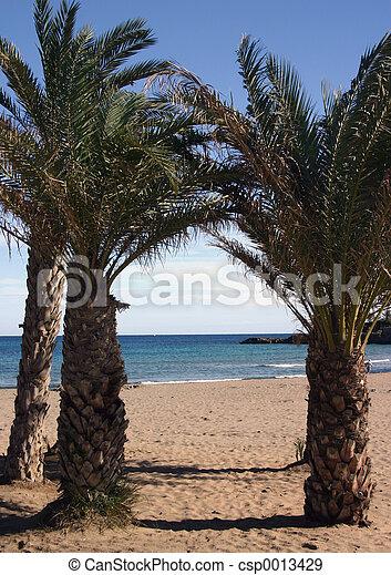 the beach - csp0013429